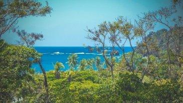 Playa Nacascola autor: Jacek Brzezowski