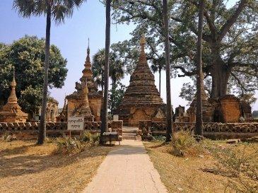 Ava Birma