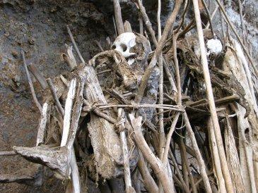 cmentarz w Asenki  2.JPG