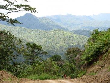 Krajobraz Papuaski.JPG