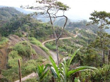 drogi w  Papua Nowej Gwinei .JPG