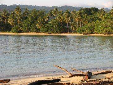Krajobraz Papuaski