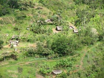 Wioski w Papui Nowej Gwinei .JPG