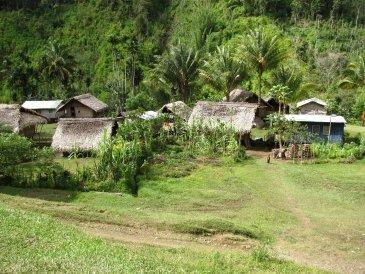 Wioski Papua Nowa Gwinea .JPG