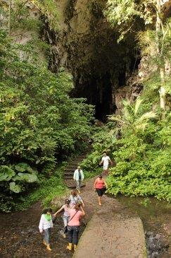 Jaskinia Guacharo Wenezuela