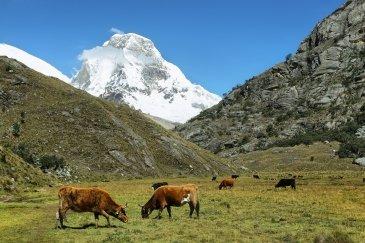 Huascaran Park Narodowy Peru